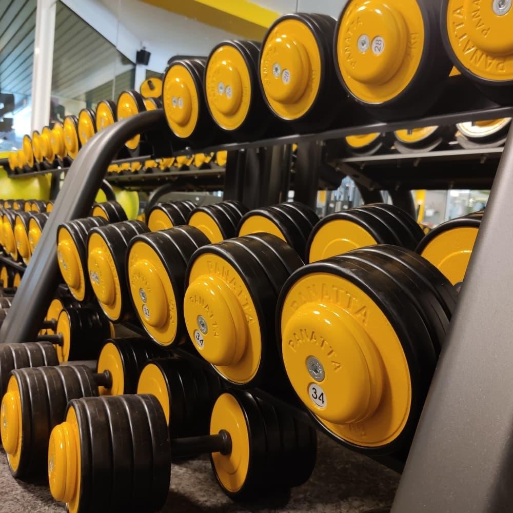 Poids Silver Gym